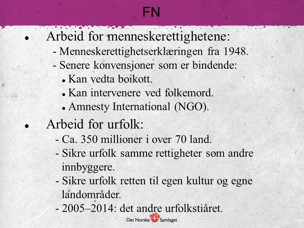 Arbeid for menneskerettighetene: