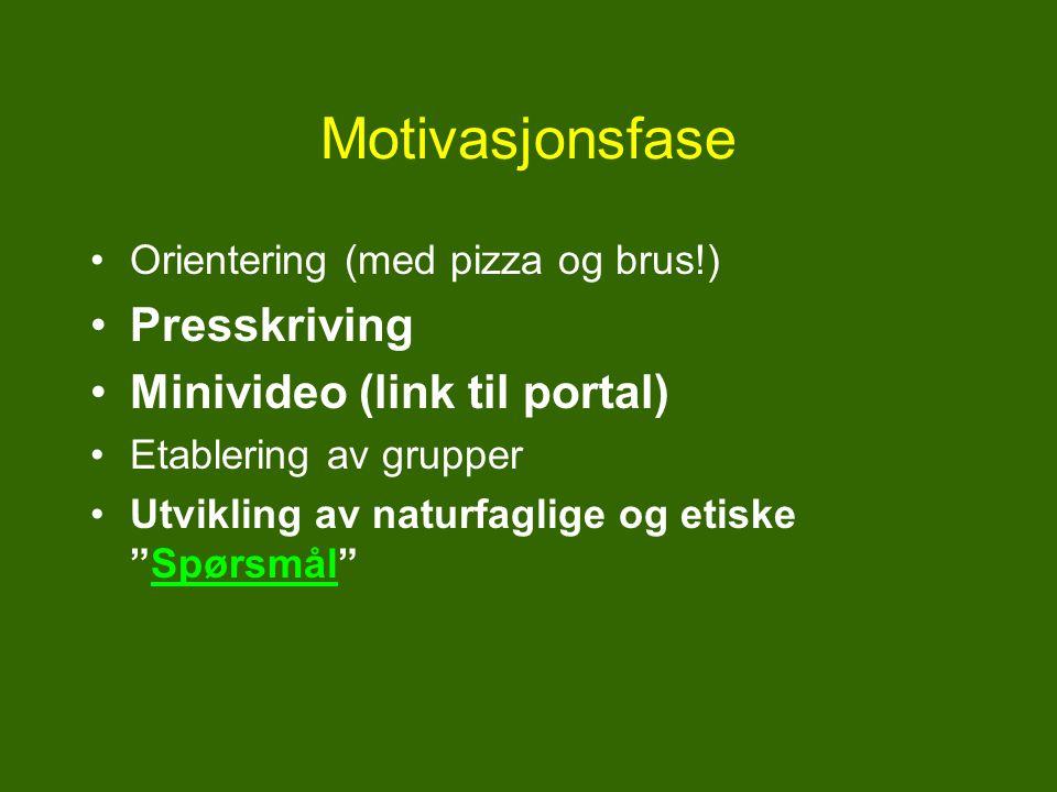 Motivasjonsfase Presskriving Minivideo (link til portal)