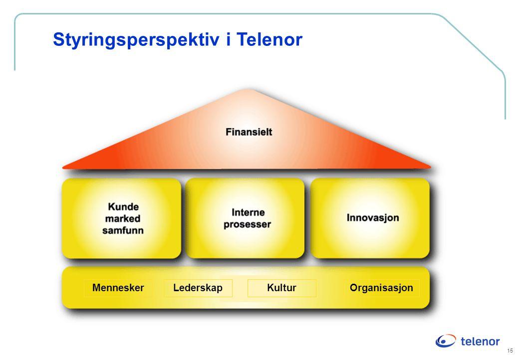 Styringsperspektiv i Telenor