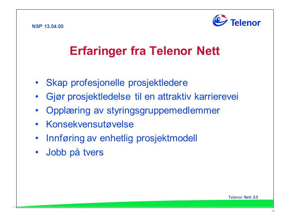 Erfaringer fra Telenor Nett