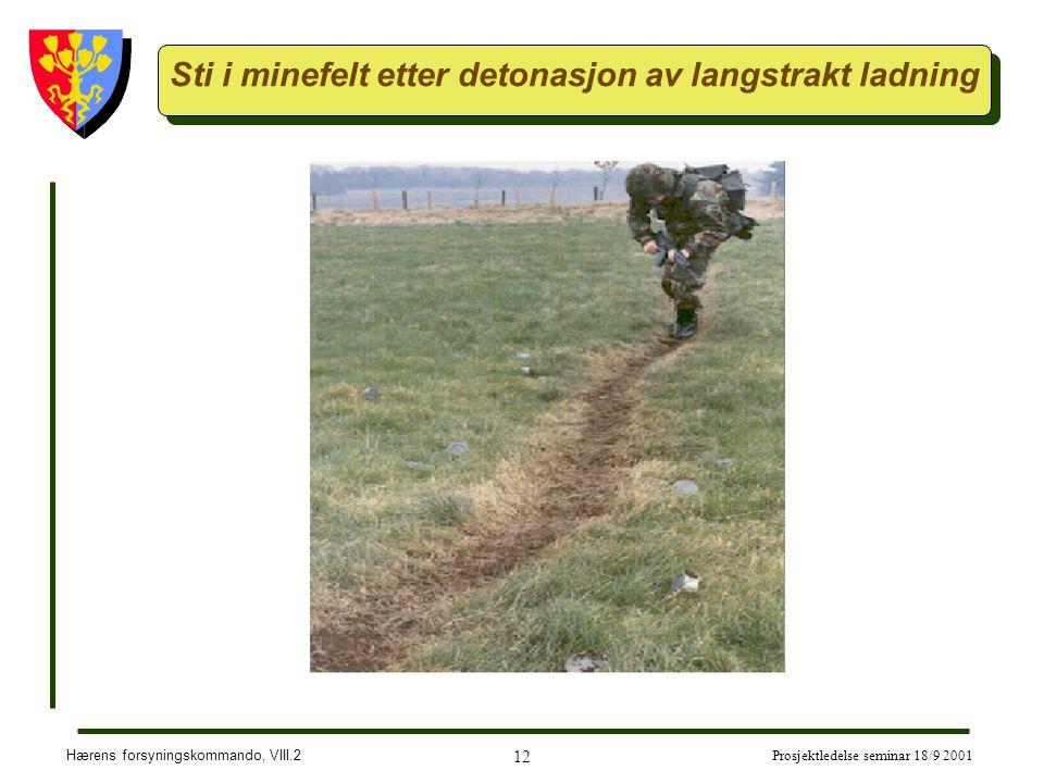 Sti i minefelt etter detonasjon av langstrakt ladning