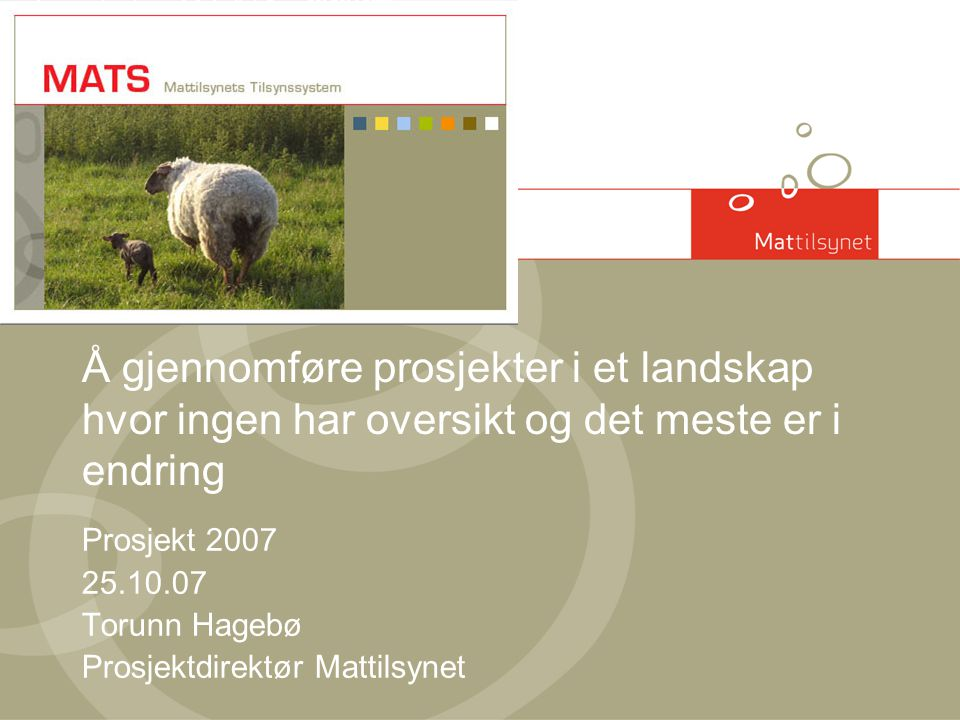 Prosjekt 2007 25.10.07 Torunn Hagebø Prosjektdirektør Mattilsynet