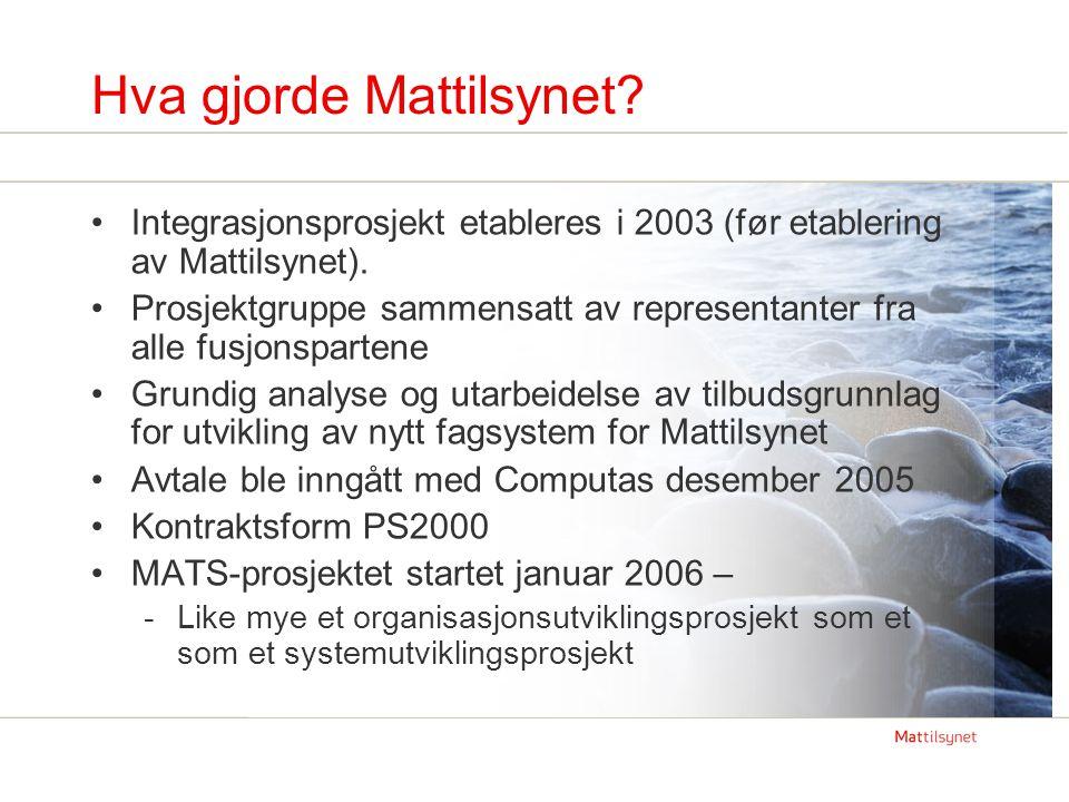 Hva gjorde Mattilsynet