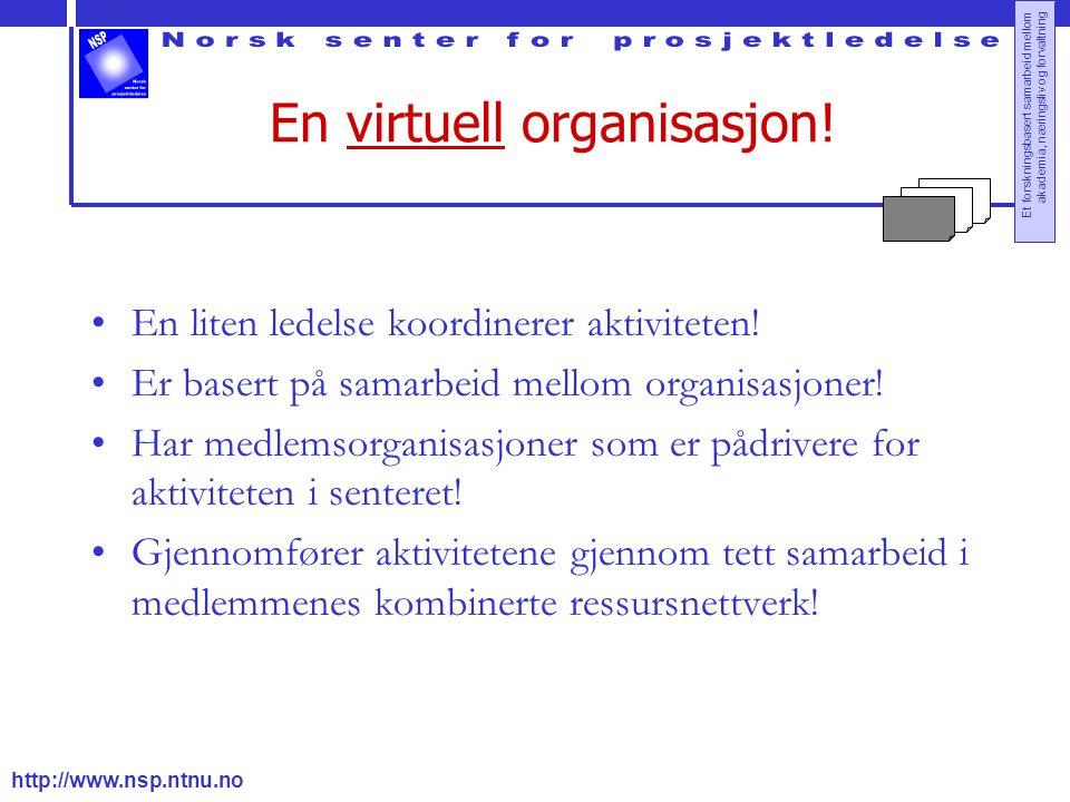 En virtuell organisasjon!