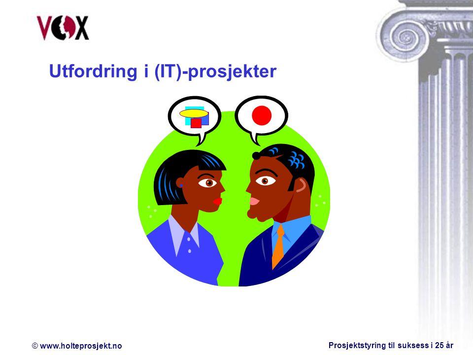Utfordring i (IT)-prosjekter