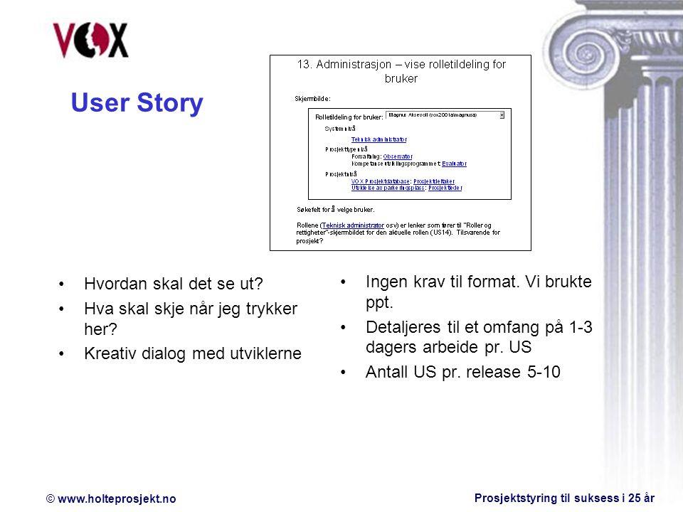User Story Ingen krav til format. Vi brukte ppt.