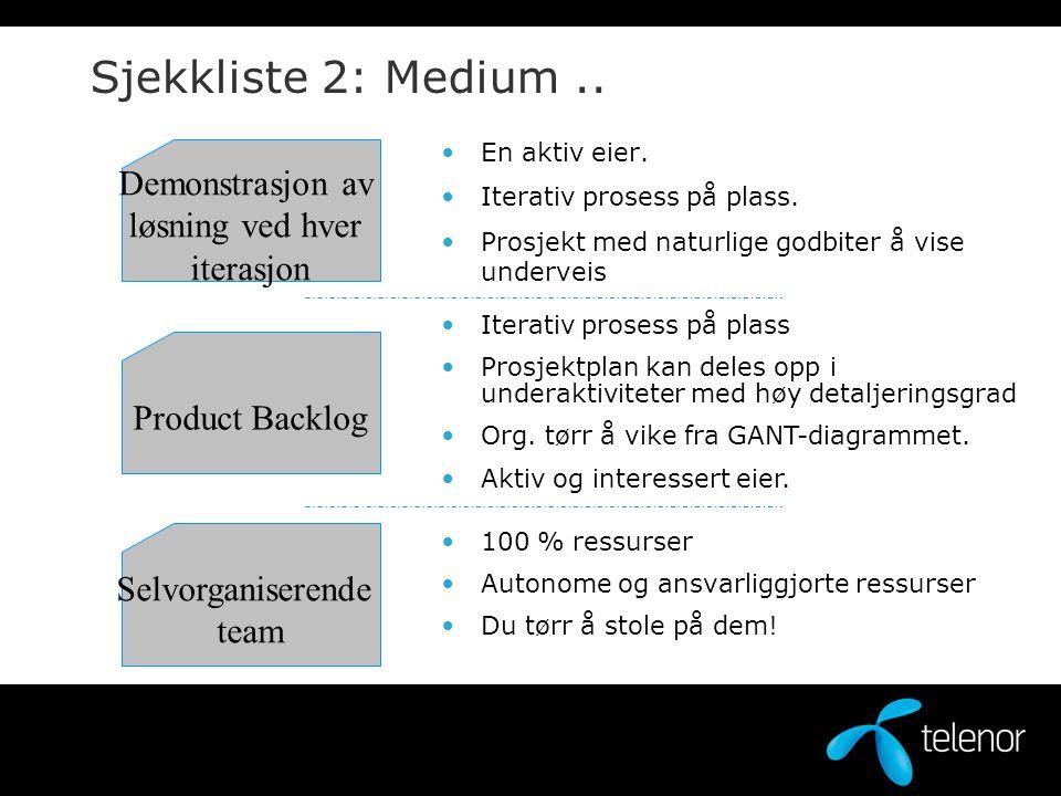 Sjekkliste 2: Medium .. Demonstrasjon av løsning ved hver iterasjon