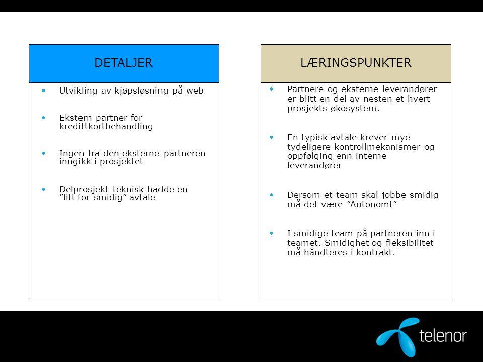 DETALJER LÆRINGSPUNKTER