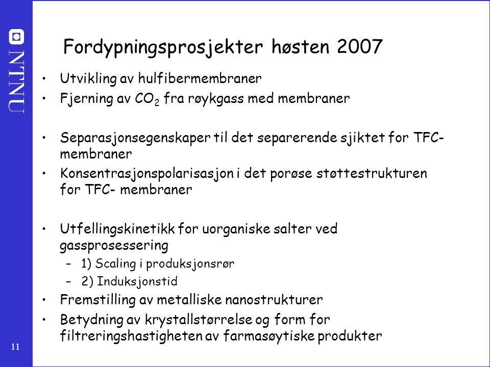 Fordypningsprosjekter høsten 2007