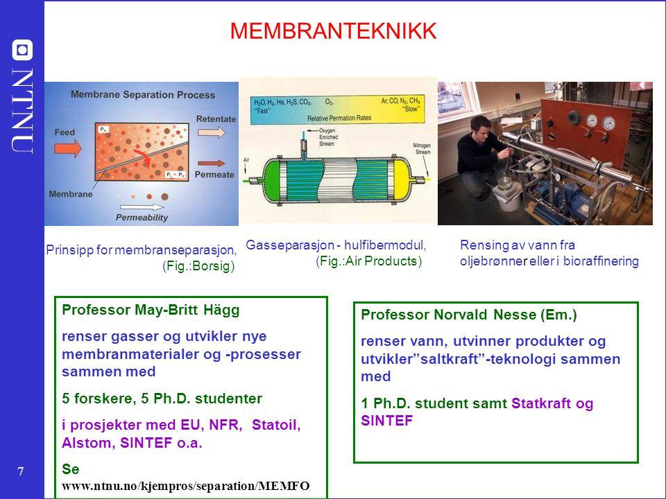 MEMBRANTEKNIKK Professor May-Britt Hägg Professor Norvald Nesse (Em.)
