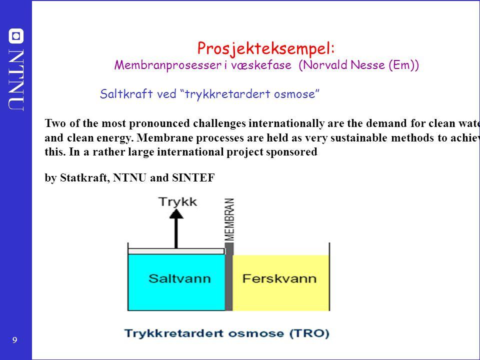 Membranprosesser i væskefase (Norvald Nesse (Em))