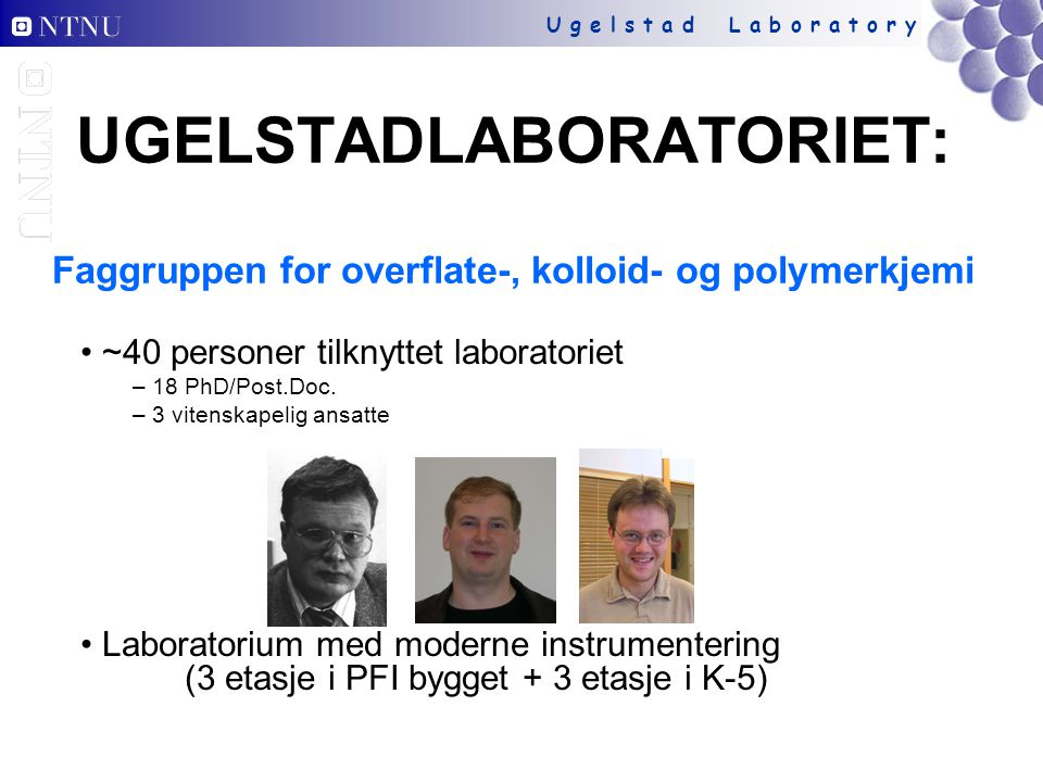 UGELSTADLABORATORIET: Faggruppen for overflate-, kolloid- og polymerkjemi