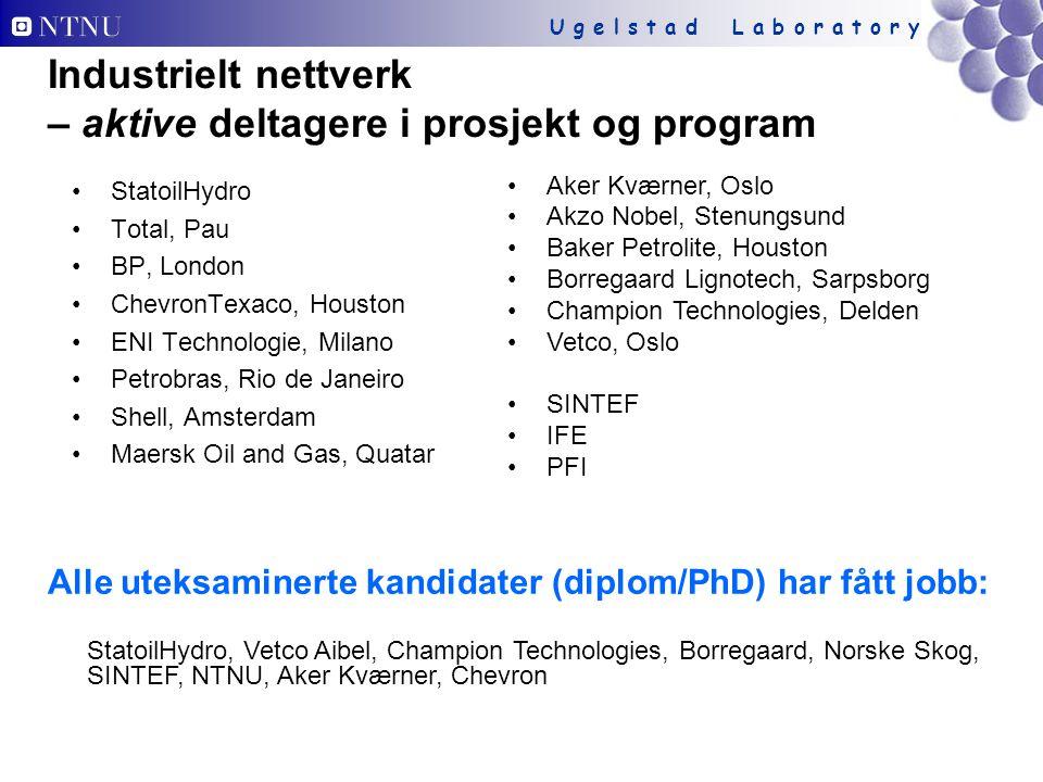 Industrielt nettverk – aktive deltagere i prosjekt og program