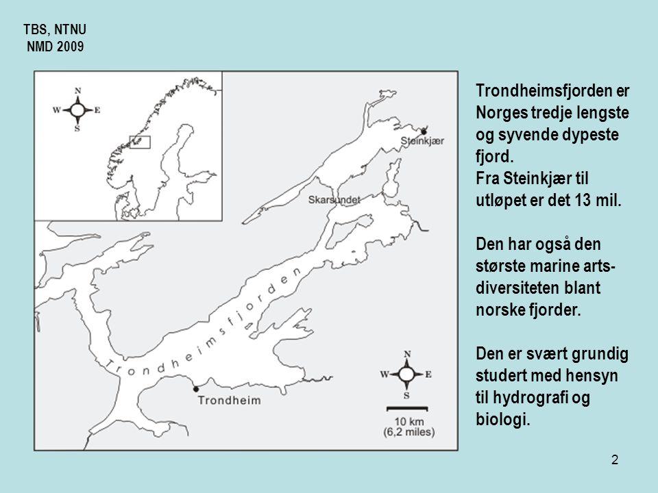Trondheimsfjorden er Norges tredje lengste og syvende dypeste fjord.