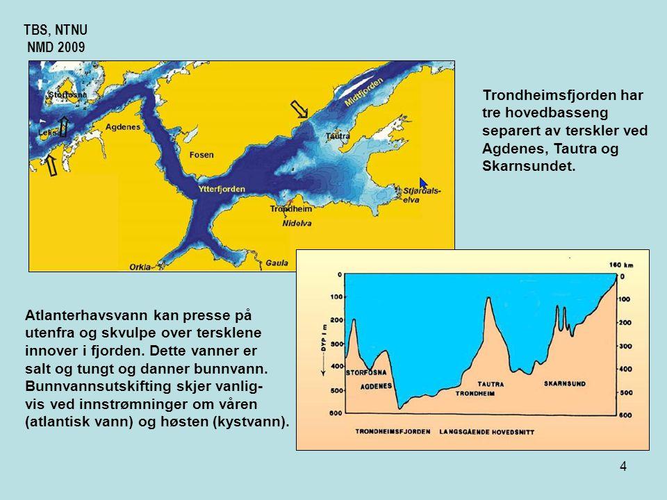 TBS, NTNU NMD 2009. Trondheimsfjorden har. tre hovedbasseng. separert av terskler ved. Agdenes, Tautra og.