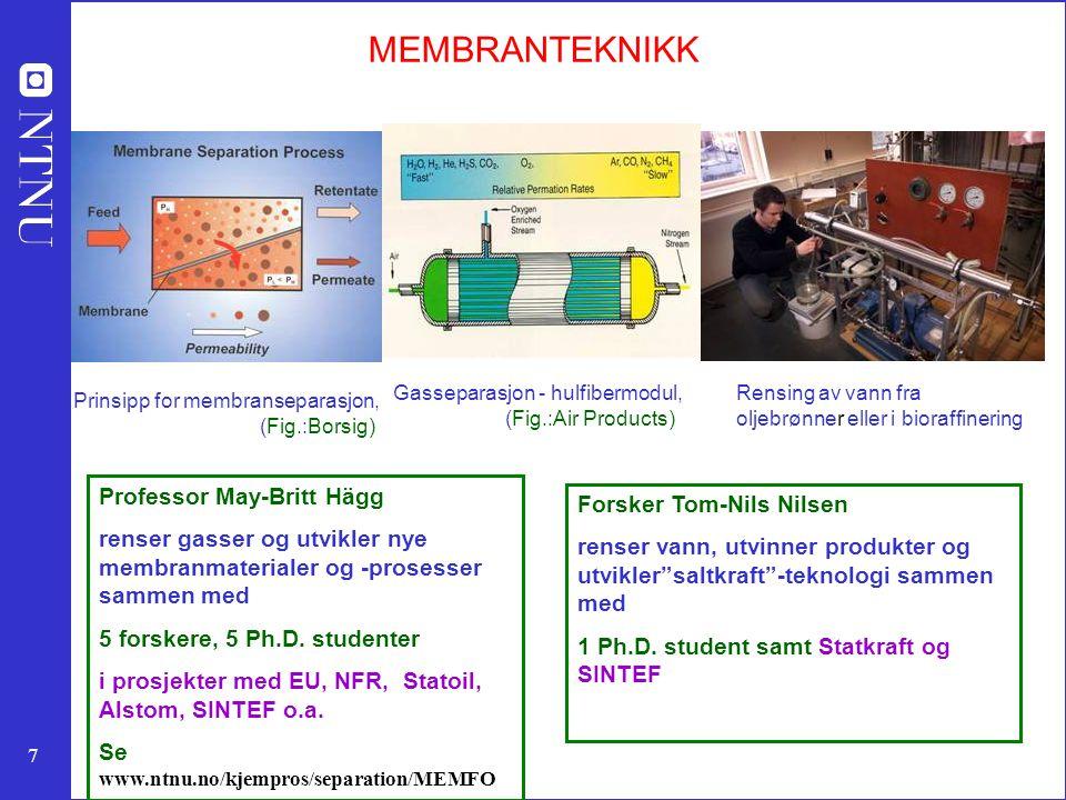 MEMBRANTEKNIKK Professor May-Britt Hägg Forsker Tom-Nils Nilsen