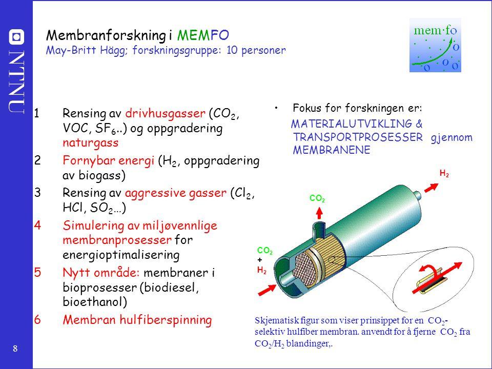 Membranforskning i MEMFO May-Britt Hägg; forskningsgruppe: 10 personer