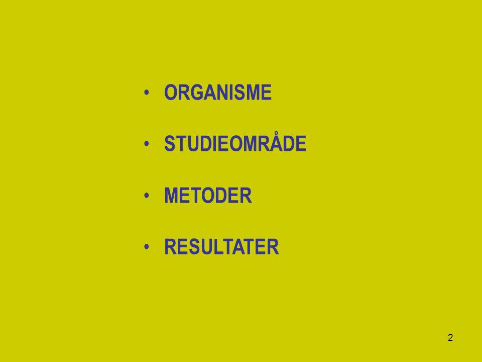 ORGANISME STUDIEOMRÅDE METODER RESULTATER