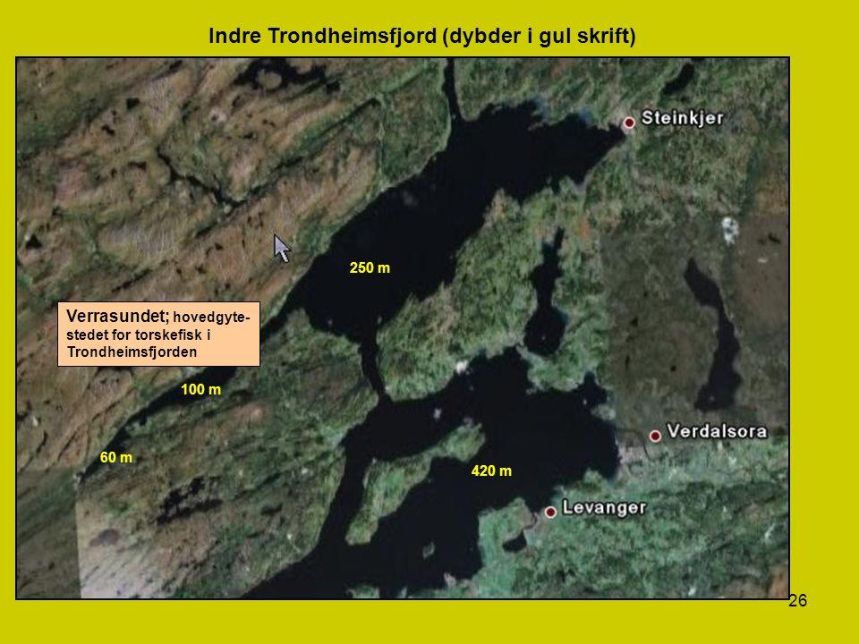 Indre Trondheimsfjord (dybder i gul skrift)