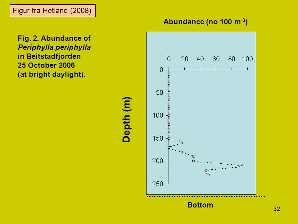 Depth (m) Figur fra Hetland (2008) Abundance (no 100 m-3)