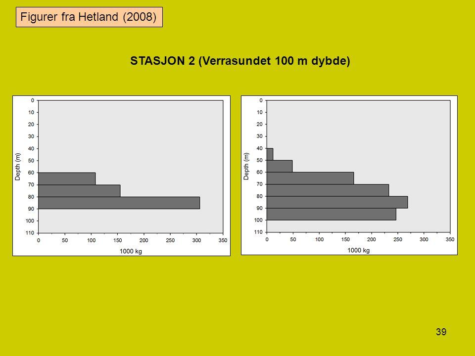 Figurer fra Hetland (2008) STASJON 2 (Verrasundet 100 m dybde)
