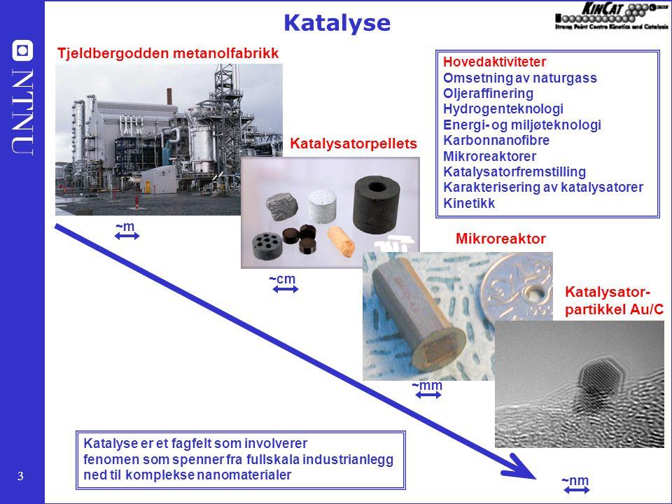 Katalyse Tjeldbergodden metanolfabrikk Katalysatorpellets Mikroreaktor