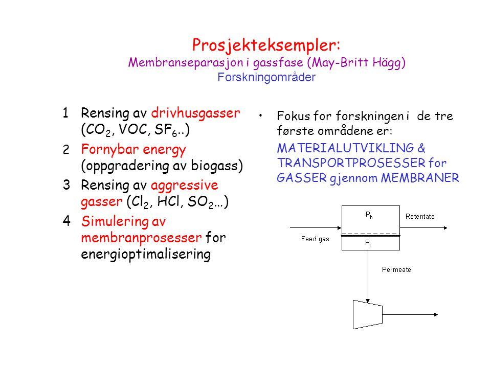 Prosjekteksempler: Membranseparasjon i gassfase (May-Britt Hägg) Forskningområder