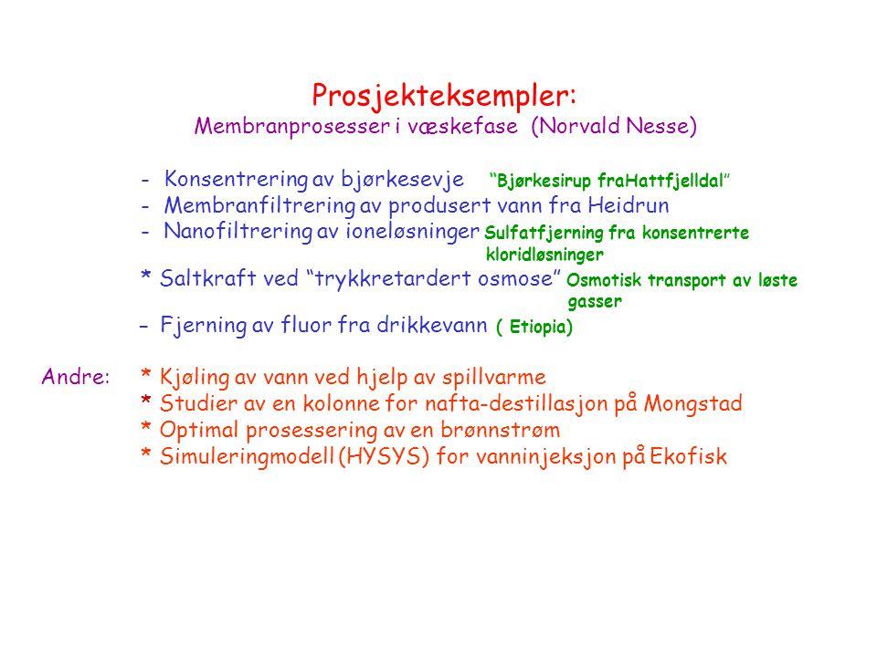 Membranprosesser i væskefase (Norvald Nesse)