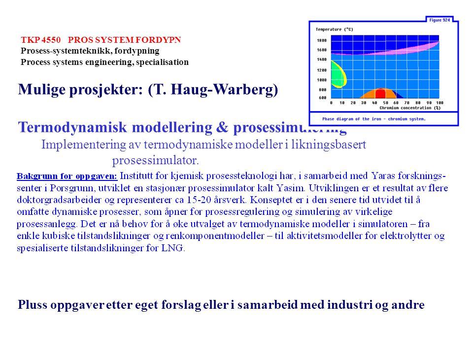 Mulige prosjekter: (T. Haug-Warberg)
