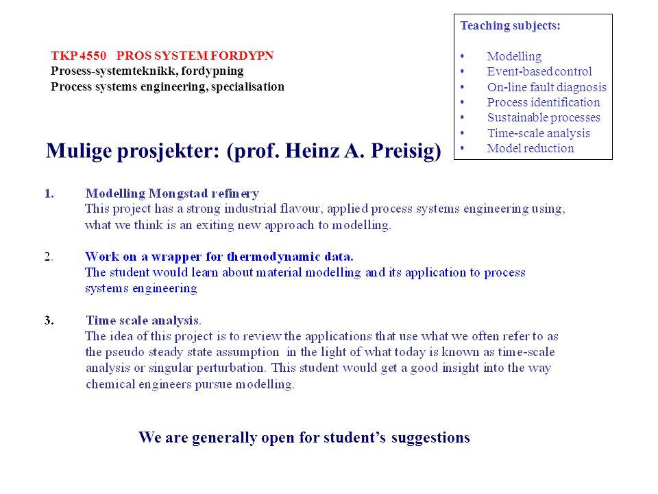 Mulige prosjekter: (prof. Heinz A. Preisig)