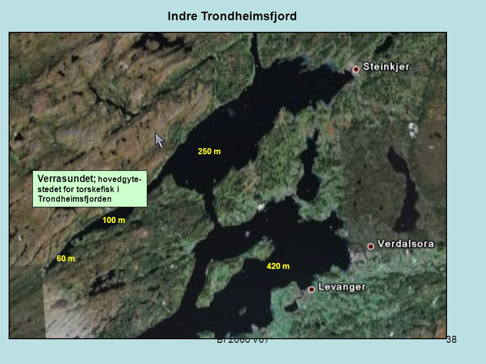 Indre Trondheimsfjord