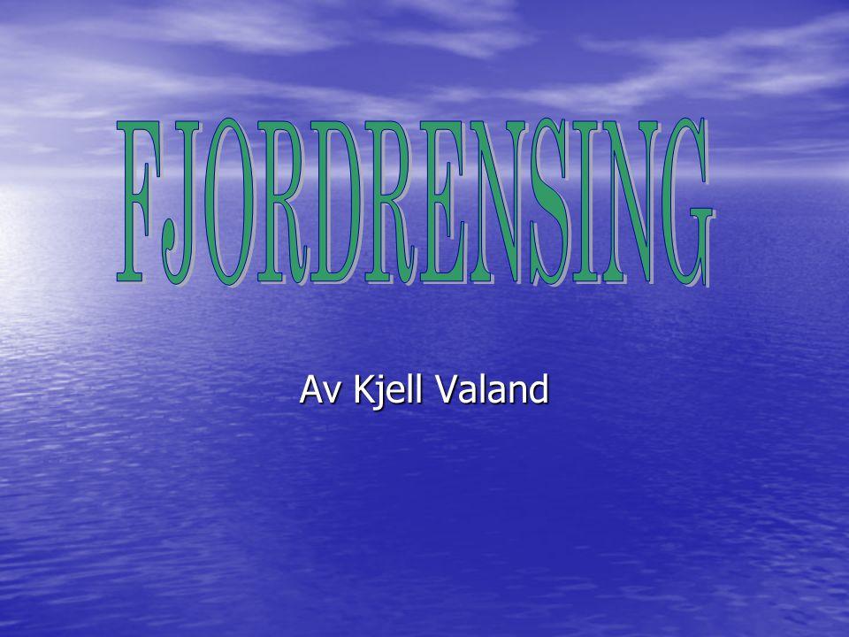 FJORDRENSING Av Kjell Valand (*) Fjordrensing: