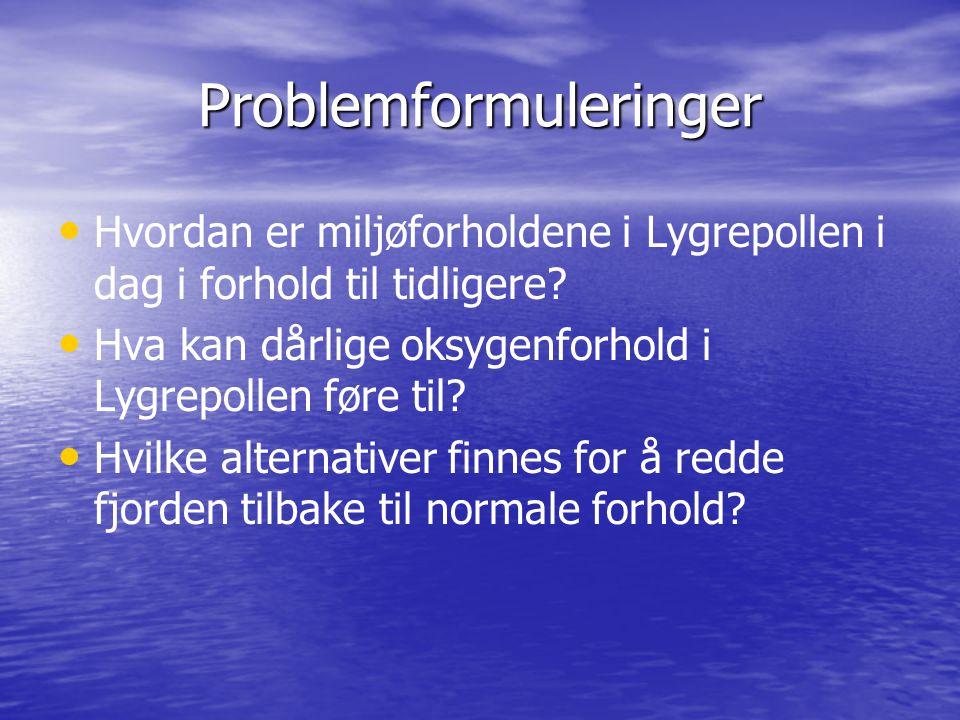 Problemformuleringer