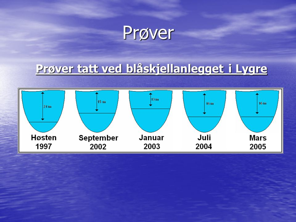 Prøver tatt ved blåskjellanlegget i Lygre