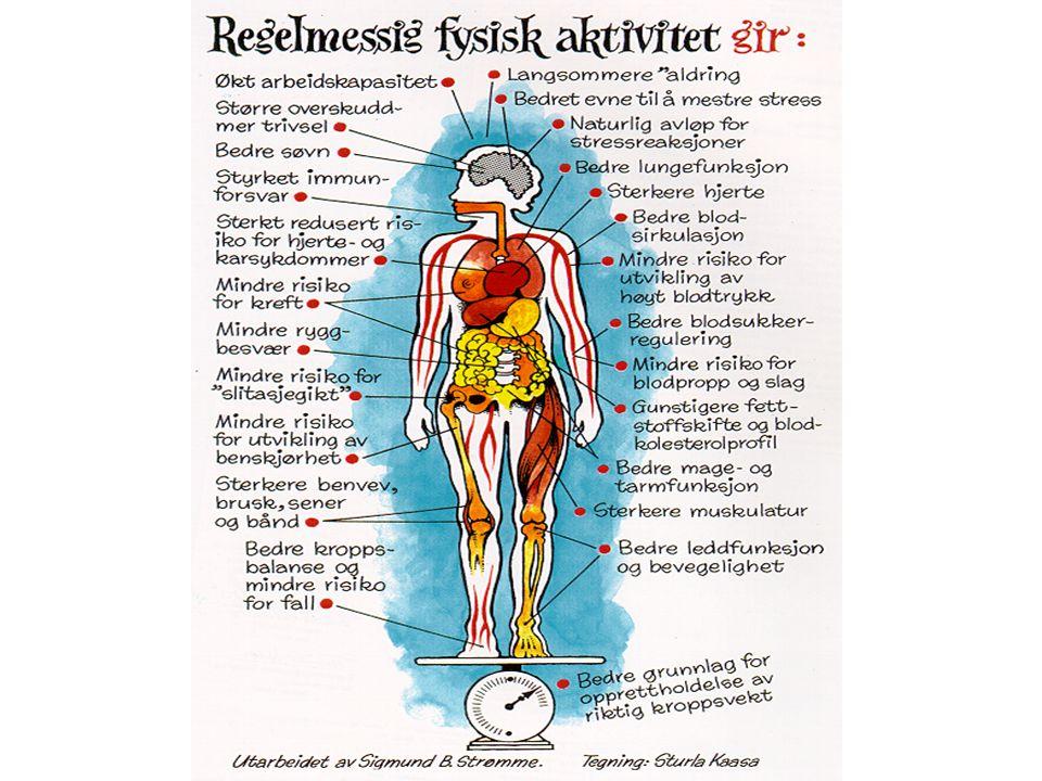 FIA dobler risikoen for død, HKS, diabetes type 2 og kreft i tykktarmen + beinskjørhet. Som dere ser så har FA en rekke positive virkninger. Noen er spesiselt gledelige for eldre.