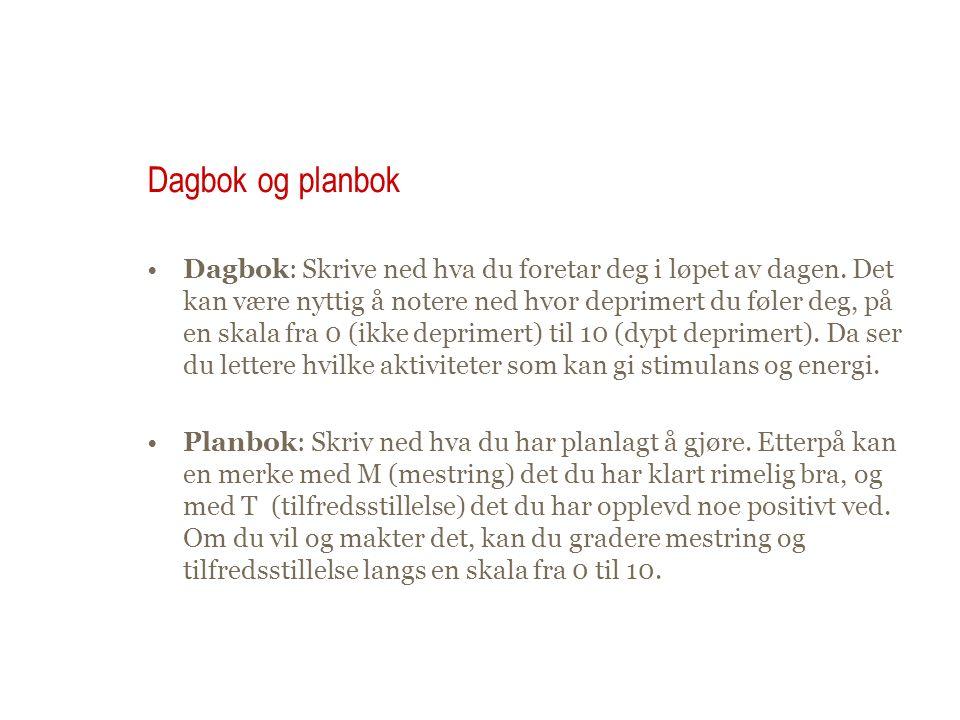 Dagbok og planbok