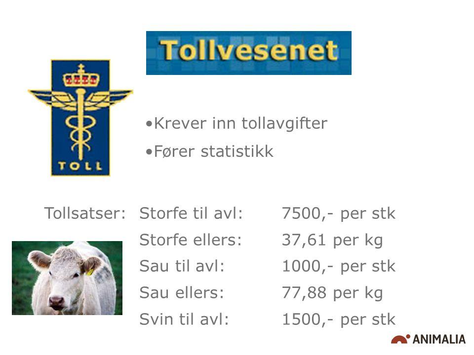 Krever inn tollavgifter Fører statistikk