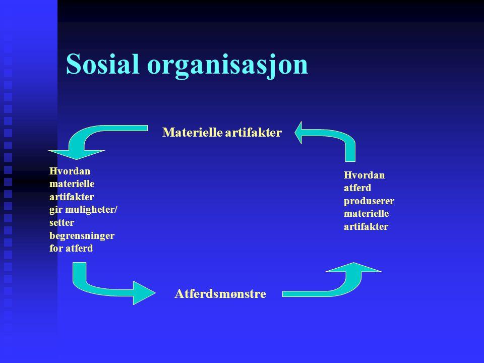 Sosial organisasjon Materielle artifakter Atferdsmønstre Hvordan