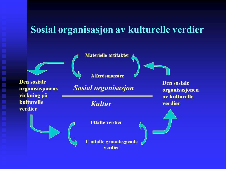 Sosial organisasjon av kulturelle verdier