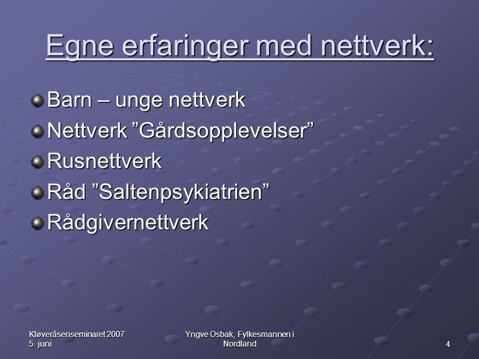Egne erfaringer med nettverk: