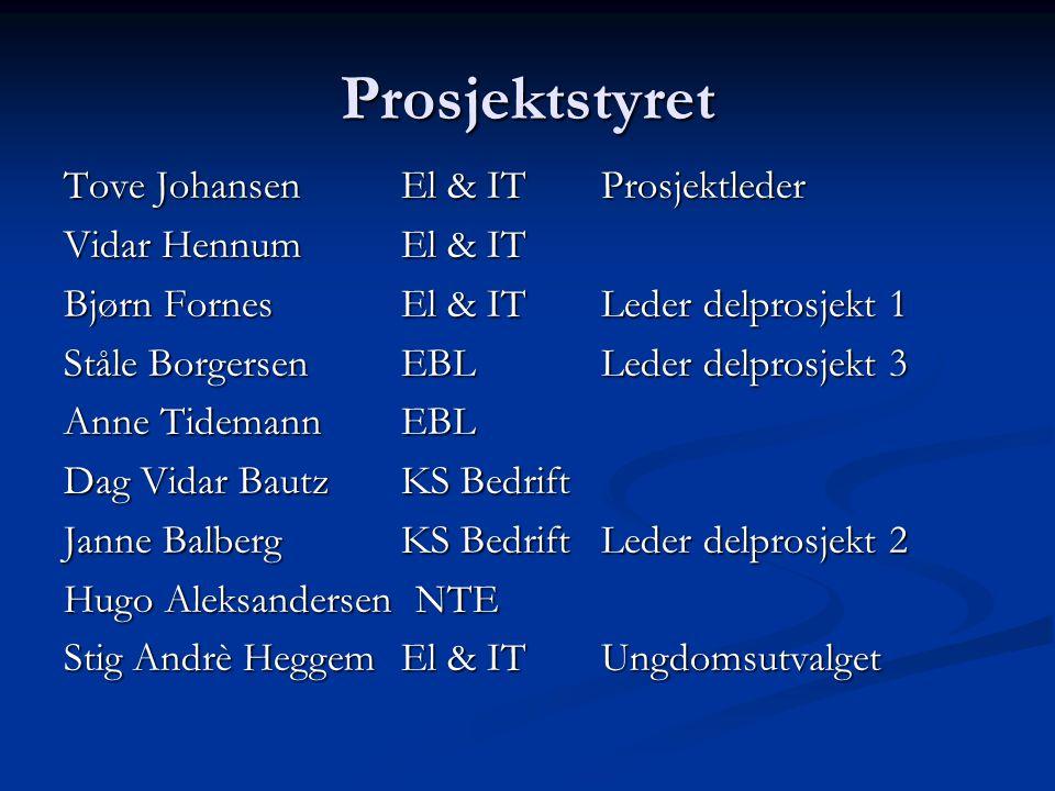 Prosjektstyret Tove Johansen El & IT Prosjektleder