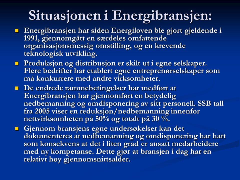 Situasjonen i Energibransjen: