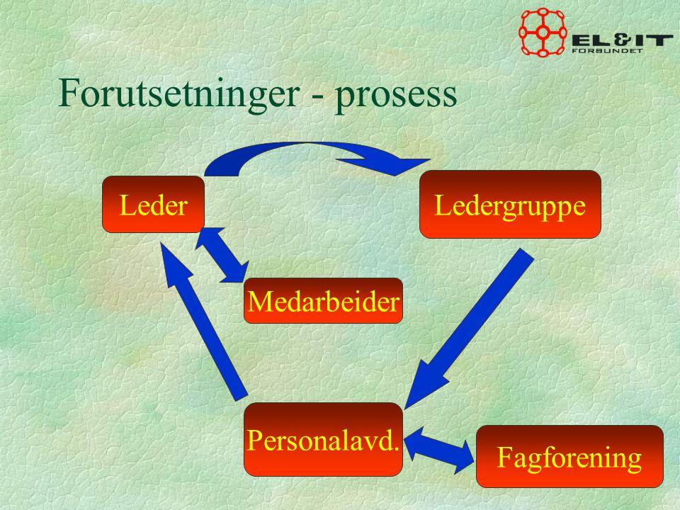 Forutsetninger - prosess