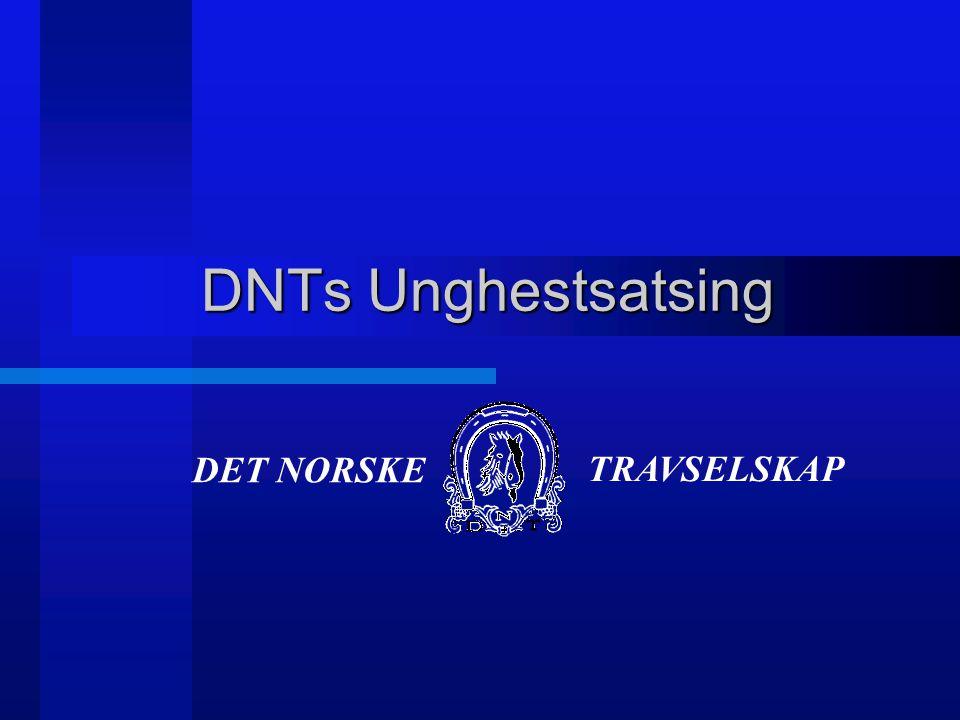 DNTs Unghestsatsing