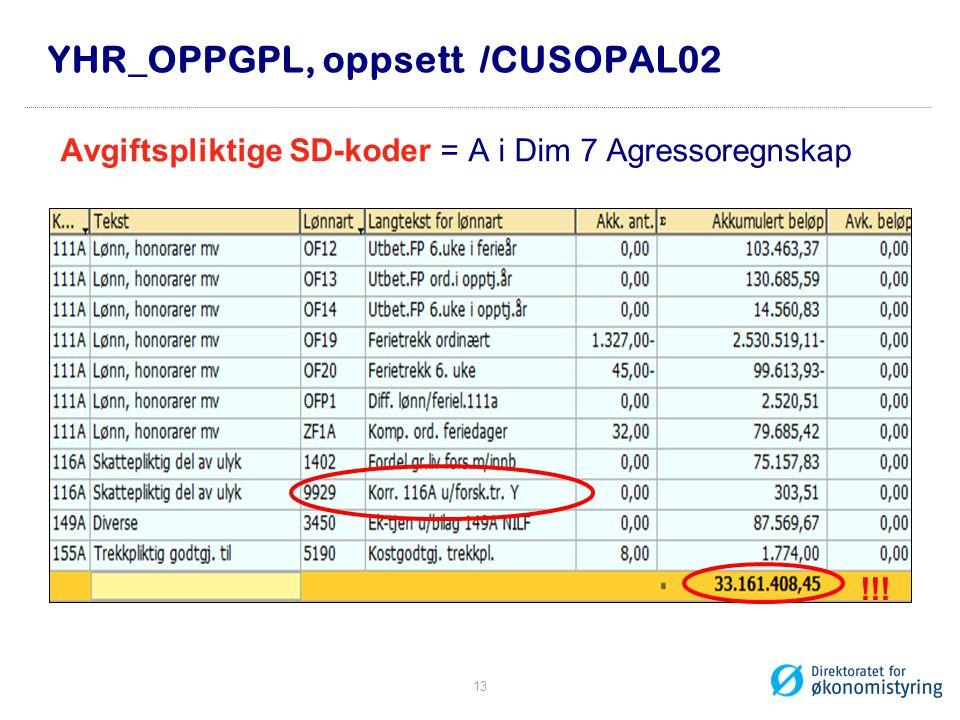 YHR_OPPGPL, oppsett /CUSOPAL02
