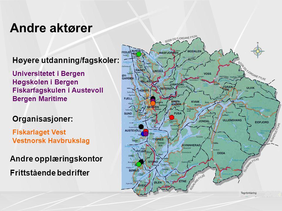 Andre aktører Høyere utdanning/fagskoler: Organisasjoner: