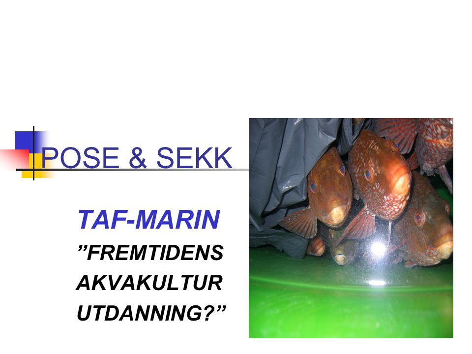 TAF-MARIN FREMTIDENS AKVAKULTUR UTDANNING