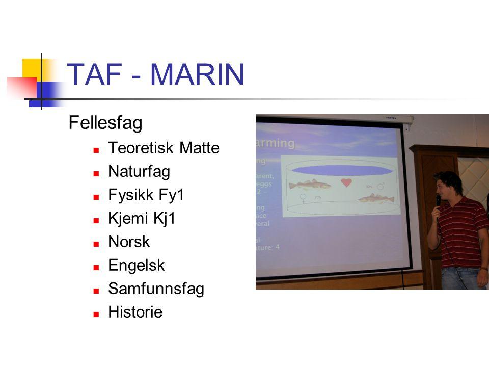 TAF - MARIN Fellesfag Teoretisk Matte Naturfag Fysikk Fy1 Kjemi Kj1
