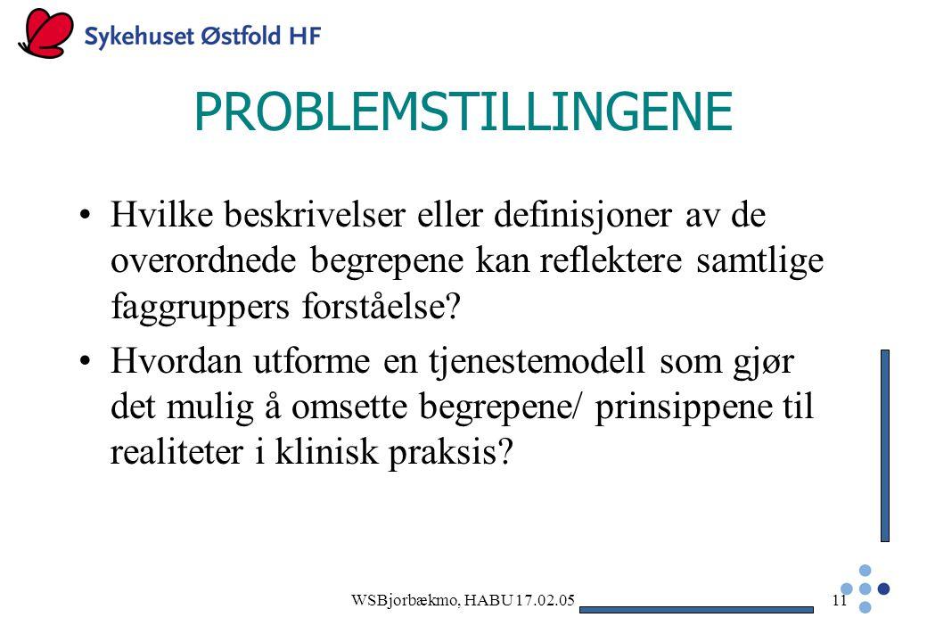 PROBLEMSTILLINGENE Hvilke beskrivelser eller definisjoner av de overordnede begrepene kan reflektere samtlige faggruppers forståelse