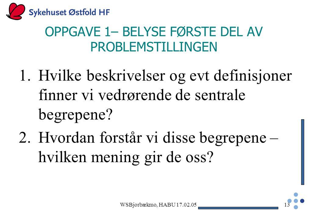 OPPGAVE 1– BELYSE FØRSTE DEL AV PROBLEMSTILLINGEN